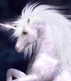 I want to be a Unicorn! See more ideas about Unicorn, Unicorns and mermaids and Real unicorn. The Last Unicorn, Real Unicorn, Unicorn Horse, Unicorn Art, Magical Unicorn, White Unicorn, Majestic Unicorn, Purple Unicorn, Unicorn And Fairies