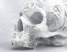 "Check out new work on my @Behance portfolio: ""Skull with ornament"" http://be.net/gallery/40683191/Skull-with-ornament"