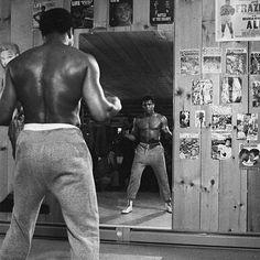 Sports Illustrated, Kickboxing, Citation Mohamed Ali, Muay Thai, Jiu Jitsu, Kentucky, Muhammad Ali Quotes, Citations Business, Float Like A Butterfly