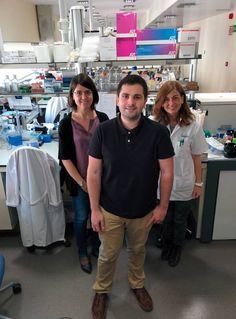 Cómo 'resetear' el sistema inmune para curar una enfermedad
