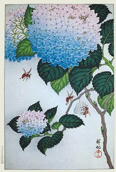 Japanese Art Print - Hydrangea and Wasps (Ajisai ni Jigabachi) by Ohara Koson Art And Illustration, Art Floral, Arte Naturalista, Ohara Koson, Art Chinois, Art Asiatique, Art Japonais, Japanese Painting, Chinese Painting