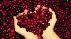 arandanos agrios, manos, corazon 167014