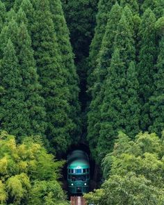 Trains, Teddy Bears and abandoned places Train Tracks, Train Rides, Beautiful World, Beautiful Places, Trains, Places To Travel, Places To Visit, Travel Destinations, Ouvrages D'art