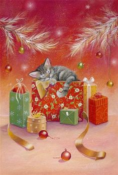 Sarah Summers ~ kitten sleeping on a Christmas present under the tree,