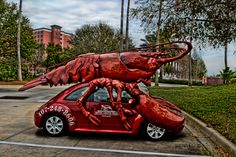 Places we've gone: The best place to eat lobster in Orlando, Florida. 'Boston Lobster Feast'