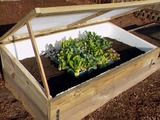 Hot to build a cold frame