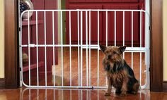 Groupon - Expandable White Metal Pet Gate with Door. Free Returns. in Online Deal. Groupon deal price: $29.99