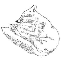 T34 . . #アート #kreativ #sketch #drawing #dotart #lineart #white #zeichnung #black #transparent #painting #iblackwork #design #jirai #berlin #fineart #fox #art #dunkelgold #zeichnen #madebyme #illustration #handmade #overthinking #melancholie #hiphop #love #instafineliner #blackworknow #nachtschattengesellschaft