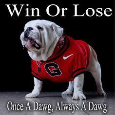 (UGA-6 vs USC- 24) WIN OR LOSE...ONCE A DAWG, ALWAYS A DAWG!  GO DAWGS! 2014