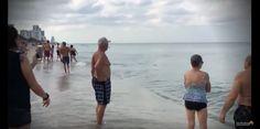 La panique sur la plage d'Hollywood Beach, suite à l'apparition d'un aileron de requin