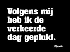 Adi loog tegen Gust over academie Best Quotes, Funny Quotes, Dutch Words, Words Quotes, Sayings, Dutch Quotes, One Liner, True Words, Happy Thoughts