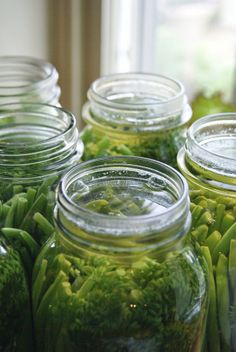 Green bean dills - canning recipe.   Instead of the fresh heads of dill, you can also substitute 2 tsp. dill seeds for each head of dill and instead of hot peppers, use 1/2 tsp. of cayenne pepper per each quart