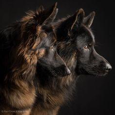 Paul Croes photography