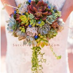 "Once you see a bouquet of succulents it's easy to say """"I do"""". Whether it's all succulents or succulents with mixed flowers it'll be a bouquet to remember. Succulent Wedding Invitations, Diy Wedding Bouquet, Diy Bouquet, Floral Wedding, Wedding Flowers, Bridal Bouquets, Wedding Cakes, Purple Succulents, Succulents Diy"