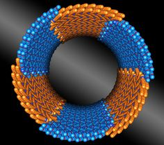 Nature-Inspired Nanotubes That Assemble Themselves, With Precision - Precision meets nano-construction, as seen in this illustration. Berkeley Lab scientists discovered a peptoid composed of two chemically distinct blocks (shown in orange and blue) that assembles itself into nanotubes with uniform diameters. (Credit: Berkeley Lab)