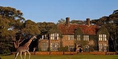 """Lujosas habitaciones, Suite """"inch Hatton"""" del hotel Giraffe Manor en Kenya"""
