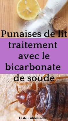 Un traitement naturel des punaises de lit avec le bicarbonate de soude afin de les éradiquer complétement et éviter leurs piqûres Before And After Weightloss, Weight Loss Transformation, Afin, Fruit, Vegetables, Health, Food, Couture, Bed Bugs Treatment