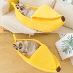 Funny Banana Cat Bed House Cute Cozy Cat Mat Beds Warm Durable Portable Pet Basket Kennel Dog Cushion Cat Supplies Multicolor|Cat Beds & Mats| - AliExpress