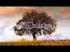 Rien Ne Peut Sauver Mon Ame - Sebastien Demrey - YouTube