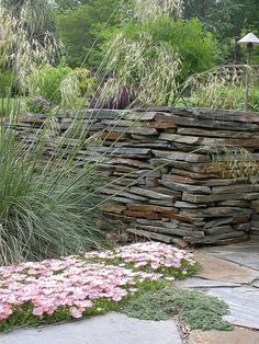 [Stipa gigantea] Love the stacked stone wall. Slate Garden, Terrace Garden, Landscaping With Rocks, Backyard Landscaping, Back Gardens, Outdoor Gardens, Dry Stack Stone, Dry Stone, Stone Retaining Wall
