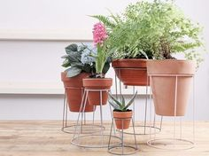 DIY Wire plant stands