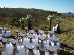 South African Wedding Venues: Destination Wedding at Tuningi Lodge, Madikwe Married Abroad, South African Weddings, Here Comes The Bride, Prince Charming, Wedding Venues, Organising, Destination Weddings, Safari, Plants