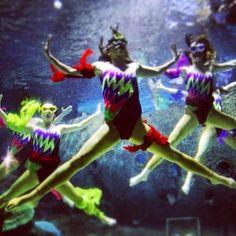 Underwater dance @Turkuazoo Akvaryum aquarium