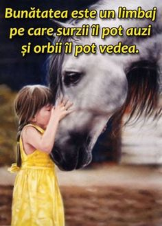 Sorin Leoveanu - Google+ Inspire Me, Quotations, Quotes, Movie Posters, Movies, Sign, Image, Facebook, Characters