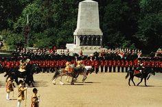 Drum horses in parade in England