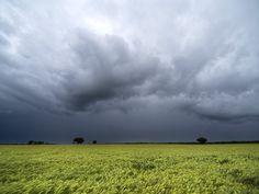 Fin de año con calor y alerta meterológico - El Servicio Meteorológico Nacional (SMN) actualizó el alerta por probables tormentas fuertes o severas para el noroeste de la provincia de Buenos Aires, sur de Córdoba, norte de La Pampa y sur de Santa Fe.La estación meteorológica, indicó que se registran áreas de lluvias y tormentas sobre e...  - http://www.info4web.com.ar/?p=4007