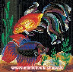 Золотая рыбка, примерно 5500 частей