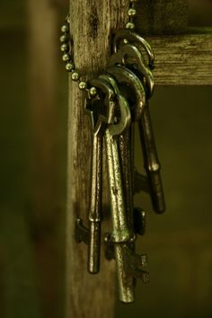 Skeleton Keys...Use to play with these as a child. Remember locking old doors and cabinets with them.