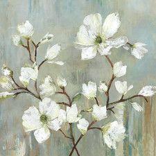 Sweetbay Magnolia Canvas Print