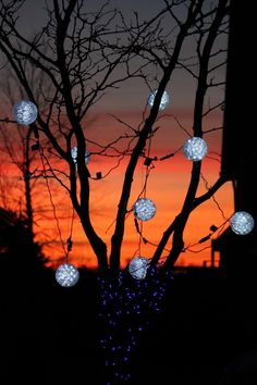 outdoor christmas lights 12