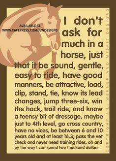 I don't ask for much... haha yep. This explains my horse shopping experience perfectly.