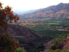 ojai, ca in my top five places to visit