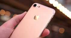 Apple продала рекордное количество iPhone в России в прошлом месяце, сообщает газета «Ведомости» со ссылкой на ритейлеров компании и ее партнеров на территории РФ.  По данным издания, продажи iPhone 7 и iPhone 7 Plus в России в октябре составили 92 тысячи устройств, при этом всего за этот месяц в стране было продано около 2,5 миллионов смартфонов. В результате iPhone 7 занял почти 4 % рынка. И это без учета «серого» рынка, где также реализуется огромное количество смартфонов.  Самым…