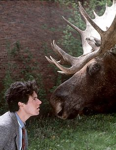 Northern Exposure My All Time Favorite TV Show I Wanna Live In Cicely and Drink Beer at the Brick!