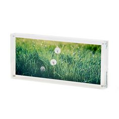 Acrylic panoramic frame  Dimensions between magnets are 25 x 10 cms.  Overall frame dimensions: 28cm x 13cm.  £12.95  Item Code 5014767