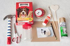 © Alice G Patterson Photography  Daily Dog Tag   DIY Milkbone Valentines #SayitwithMilkBone