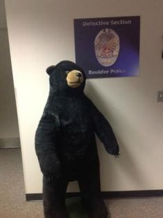 Boulder police recover stolen MontBell bear in 'late-night forest rescue'