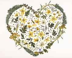 Flora-Ly: Art. Summer Meadow Heart in yellows and greens with one little bit o blue-Forget-Me-Not. Sweet.