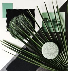 Color Palette Series 2016-Moss Green, Celadon, Black&White-Eclectic Trends