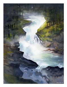olympic national forest 1 by Thomas  W. Schaller Watercolor ~ 14 inches x 10 inches