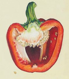 - Christina McLean, markers, bic pen and colored pencils {still life vegetable drawing}