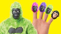 Monkeys Superheroes finger family rhymes. Collection of finger family Gorilla Frozen Spiderman Hulk