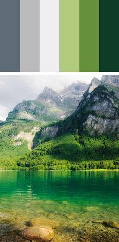 Paleta de cores - Inspiração na natureza - equilíbrio e paz no ambiente