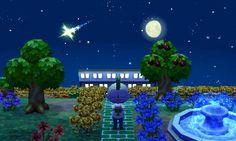 Wishing on a shooting star.
