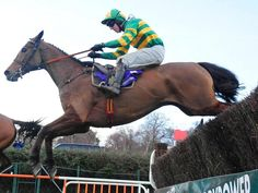 Carlingford Lough wins the Irish Gold Cup at Leopardstown for the second year running. Drawing Animals, Animal Drawings, Horse Racing Betting Tips, Sport Of Kings, Gold Cup, Race Horses, Sports Pictures, Race Day, Premier League