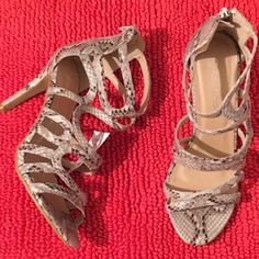 Last Call!! Brand New! Python Print Sandals! New sandals. Python print heels. Size 8. Brand new. No trades. Rubber Sole. By Aquamar. Wear with a cute dress, jeans, or skirt. Perfect for Spring, Summer, Fall...Get them now. Shoes Sandals